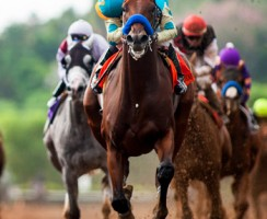 Kentucky Derby Odds 2015: American Pharoah and Dortmund Top the Racebook