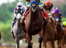 American Pharoah Derby Odds